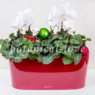 Купить Композиция 16 в интернет-магазине - Продажа новогодних цветочных композиций из живых цветов в Санкт-Петербурге