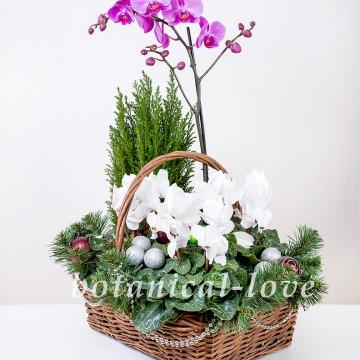 Купить Композиция 8 в интернет-магазине - Продажа новогодних цветочных композиций из живых цветов в Санкт-Петербурге
