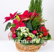 Купить Композиция 1 в интернет-магазине - Продажа новогодних цветочных композиций из живых цветов в Санкт-Петербурге