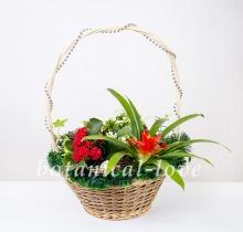 Купить Композиция 7 в интернет-магазине - Продажа новогодних цветочных композиций из живых цветов в Санкт-Петербурге