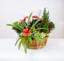 Купить Композиция 9 в интернет-магазине - Продажа новогодних цветочных композиций из живых цветов в Санкт-Петербурге